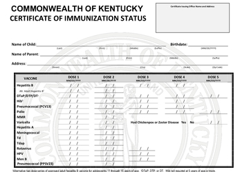 Portion of immunization status form
